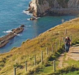 260x247-cliff